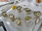 oysters_42